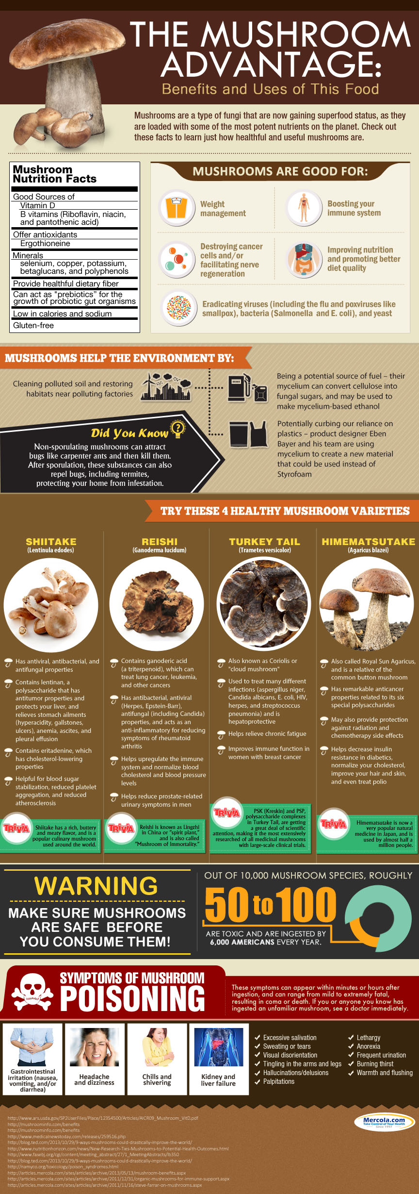 Mushrooms For Your Health: Benefits And Possible Pitfalls Infographic