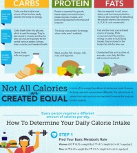 This Comprehensive Guide Explains Everything You Need To Know About Calories Infographic