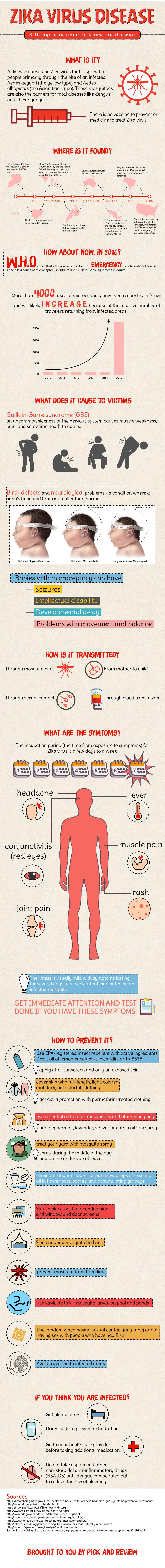 8 Things Everybody Needs To Know Zika Virus Disease Infographic