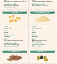 Nut, Seed, And Flower Cooking Oils: Which One To Choose? Infographic
