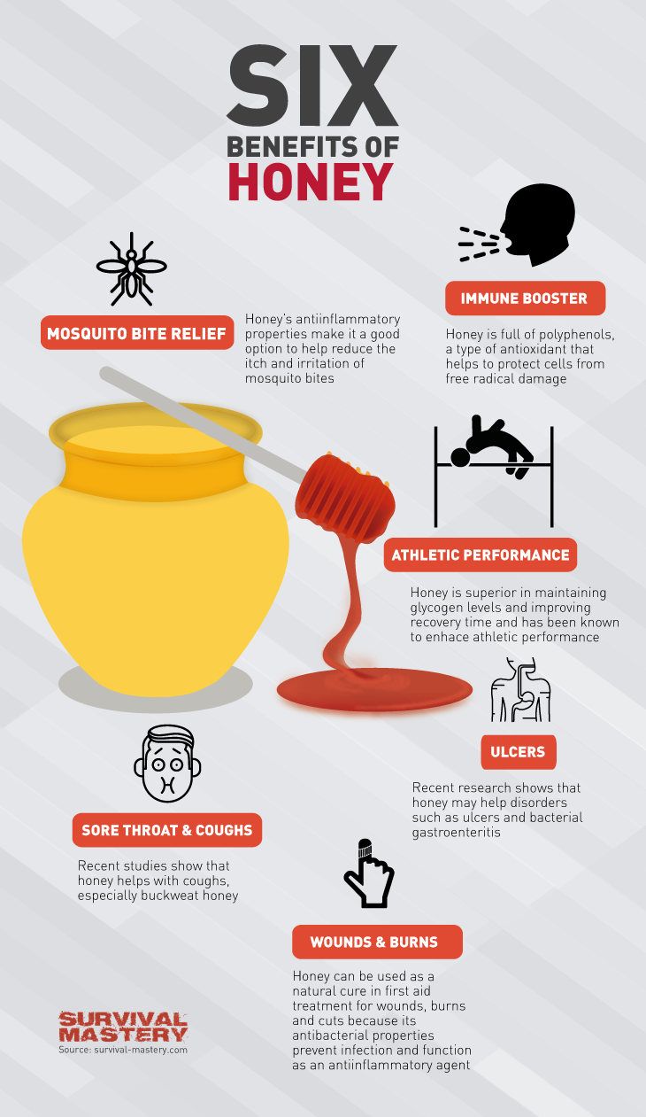 Here Are Six Reasons Why You Need Honey In Your Life Infographic