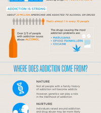 Understanding Addiction: How Does It Happen? Infographic