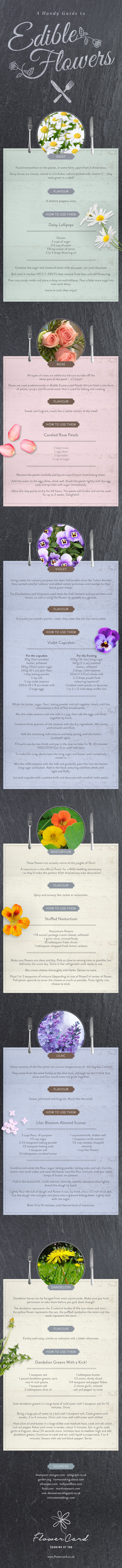 Learn How To Use Edible Flowers In Your Cooking Infographic
