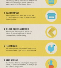 10 Cool Things You Can Do With Banana Peels Infographic