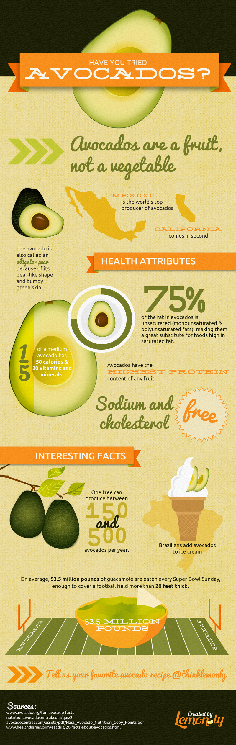 It's All About Avocados Infographic