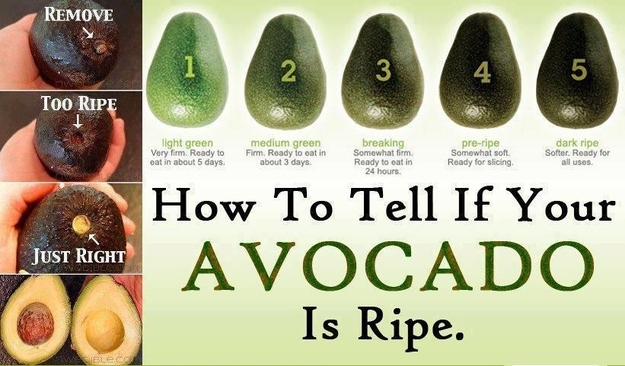 Surprisingly Easy Ways To Tell If Avocado Is Ripe Infographic