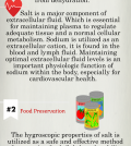 Surprising Truth About Salt Infographic