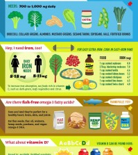 Everything About Vegan Diet In One Infographic