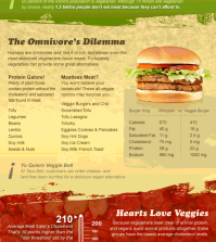 Interesting Facts And Numbers About Vegetarian Diet Infographic