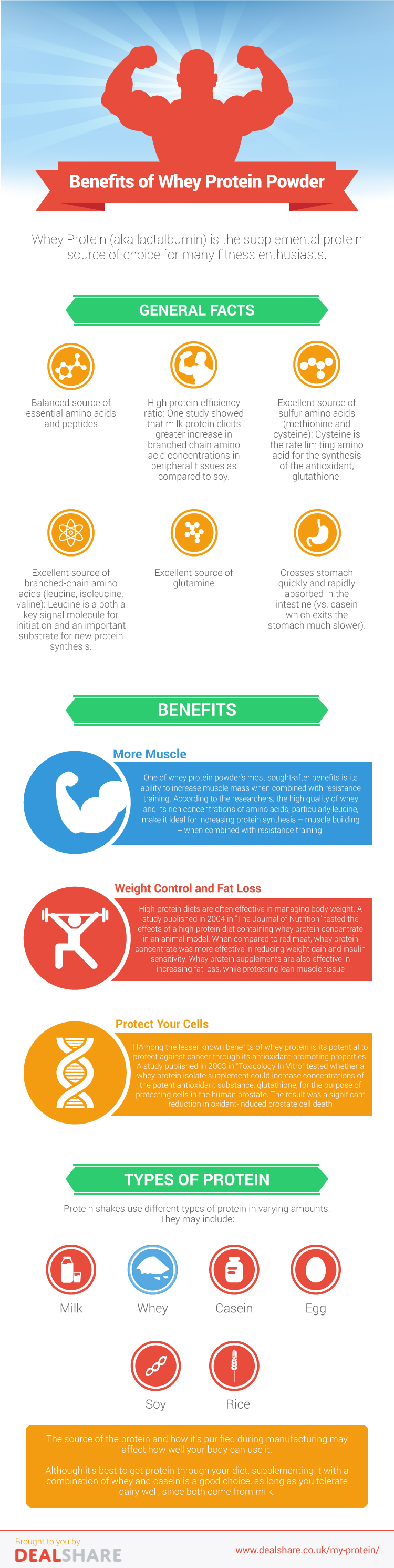 Why Whey Powder Is The Best Protein Supplement Infographic