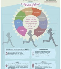 Can Exercise Make You Happy? Infographic