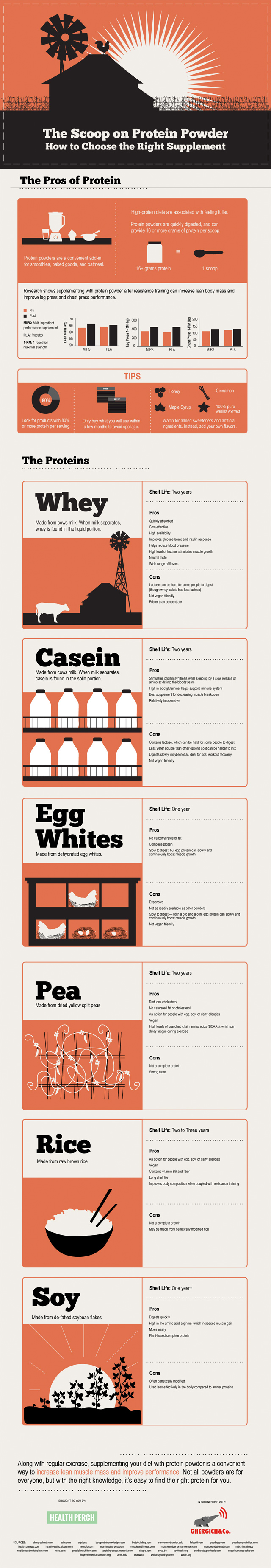 Protein Powder: Choose The Right Supplement Infographic