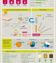 This Vitamin Might Be Way More Important Than You Think Infographic