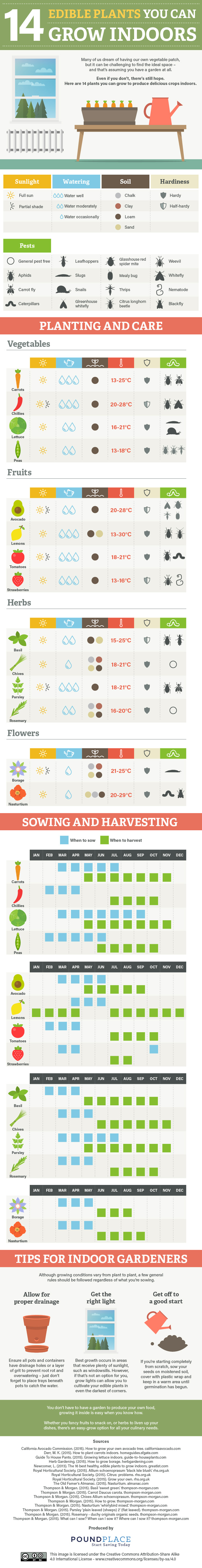 14 Best Edible Plants To Grow Indoors Infographic