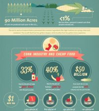 Shocking Facts About Corn Production Infographic