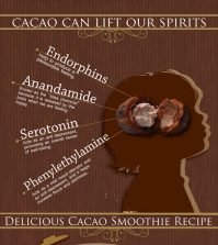 Numerous Health Benefits Of Cacao (Not To Be Confused With Cocoa) Infographic