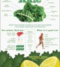Why We All Should Hail Kale Infographic
