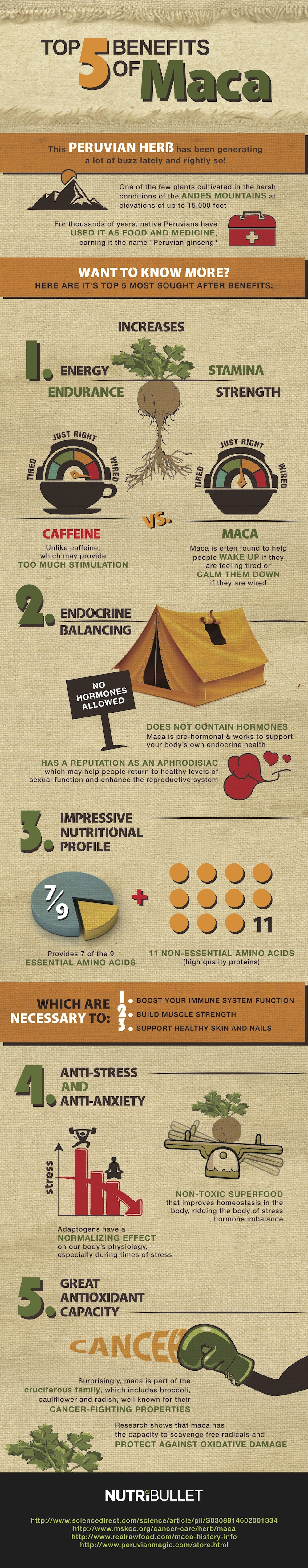 5 Ultimate Health Benefits Of Maca Root Inforgraphic