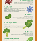 17 Superfoods For Relieving Stress And Lifting Your Mood Infographic