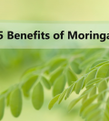 5 Excellent Reasons To Include Moringa In Your Nutrition Plan Video