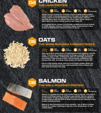 Top 10 Muscle-Building Foods For Your Workout Diet Infographic
