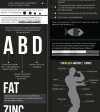 Red Meat And Fish: What Is The Real Difference? Infographic