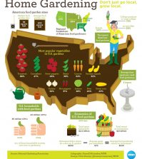 Grow Local: All About Home Gardening In The U.S. Infographic