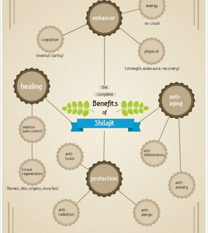 Shilajit: What It Is And Why It's Beneficial For Your Health Infographic