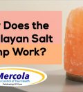 How Does The Himalayan Salt Lamp Work? Find Out! Video