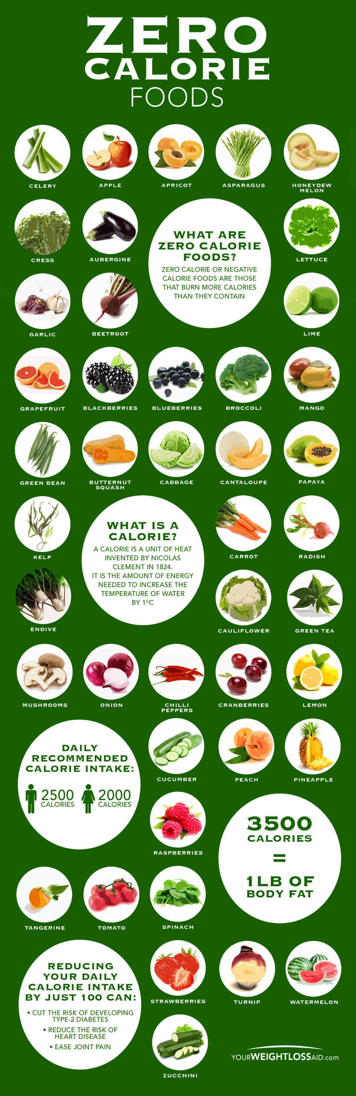 Zero Calorie Foods That Will Help You Lose Weight Fast Infographic