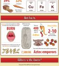 A Chili A Day Keeps The Doctor Away? Infographic