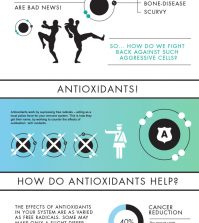 Why Are Antioxidants So Important? Infographic
