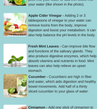 6 Ingredients You Can Add To Water For Better Digestive Health Infographic