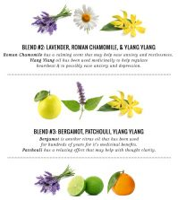 5 Essential Oil Diffuser Blends For Eliminating Stress Infographic