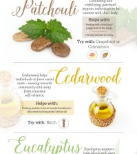A Guide To Healing Negative Emotions With Essential Oils Infographic