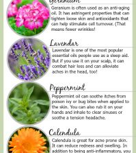 Life-Changing Essential Oil Hacks For Everyday Health Infographic