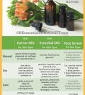 Natural DIY Serum Recipes: No More Putting Chemicals On Your Skin Infographic