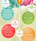 Happiness: What It Is And How It Works Infographic