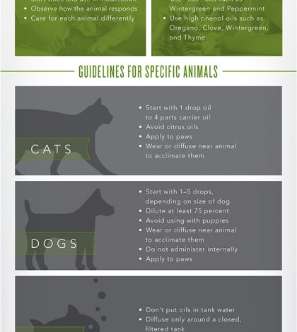 Using Essential Oils Around Animals: What You Need To Know Infographic