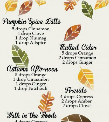 Warm And Cozy Essential Oil Blends For Autumn Infographic