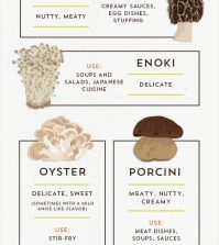 Know Your Mushrooms & How To Cook Them Infographic