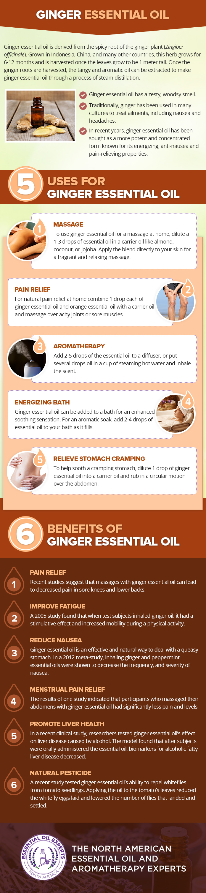 Here Is How To Use Ginger Essential Oil For Your Health And Beyond Infographic