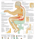 Don't Just Sit There! (The Frightening Side Effects Of Sedentary Lifestyle) Infographic