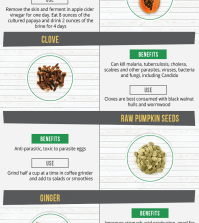 Kill Parasites Naturally With These Herbs And Spices Infographic