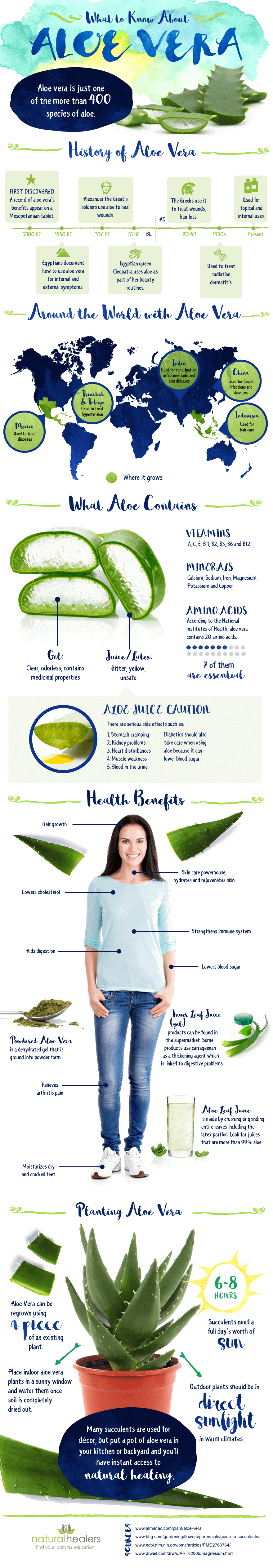 Aloe Vera: Everything You Need To Know About It Infographic