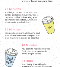 What Happens In Your Body After You Have A Cup Of Coffee Infographic