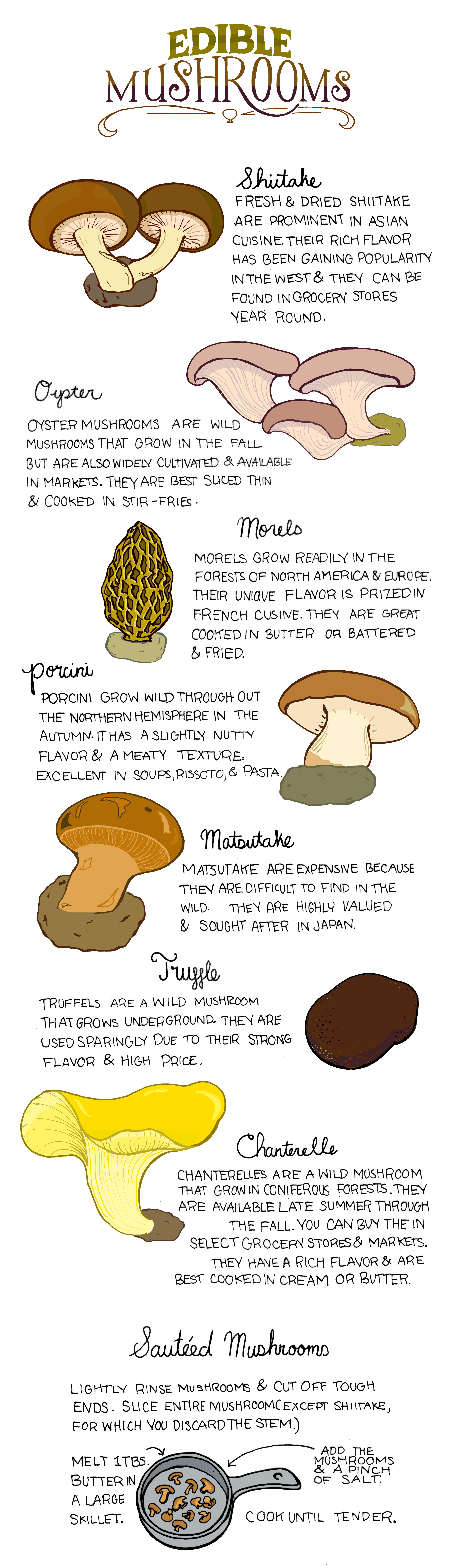 Your Guide To Identifying And Cooking Edible Mushrooms Infographic