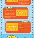 How To Use Foam Roller In Your Fitness Routine Infographic