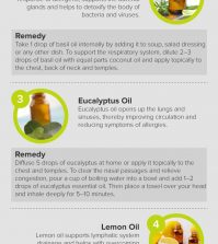 Best Essential Oils For Treating Allergies Infographic