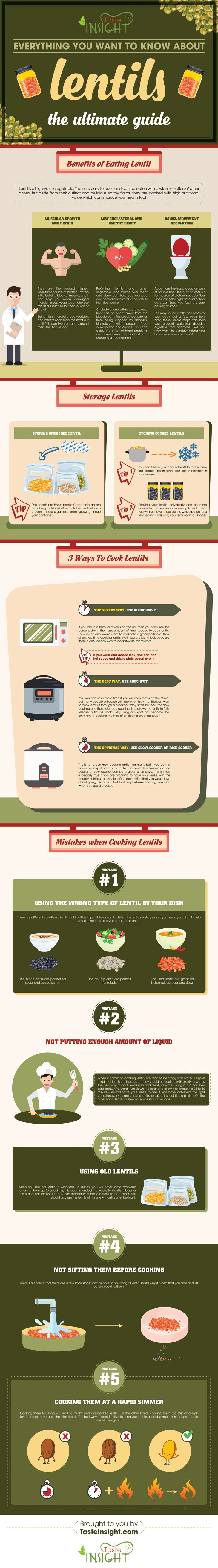 Everything You Need To Know About Lentils Infographic